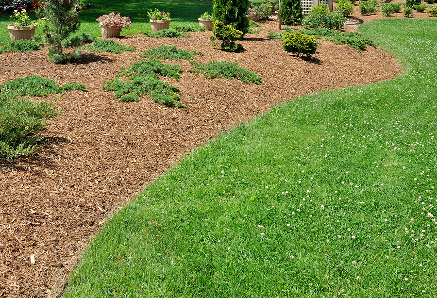 The benefits of organic mulch organic nature lawn care - Landscape elements that you should consider for your yard ...