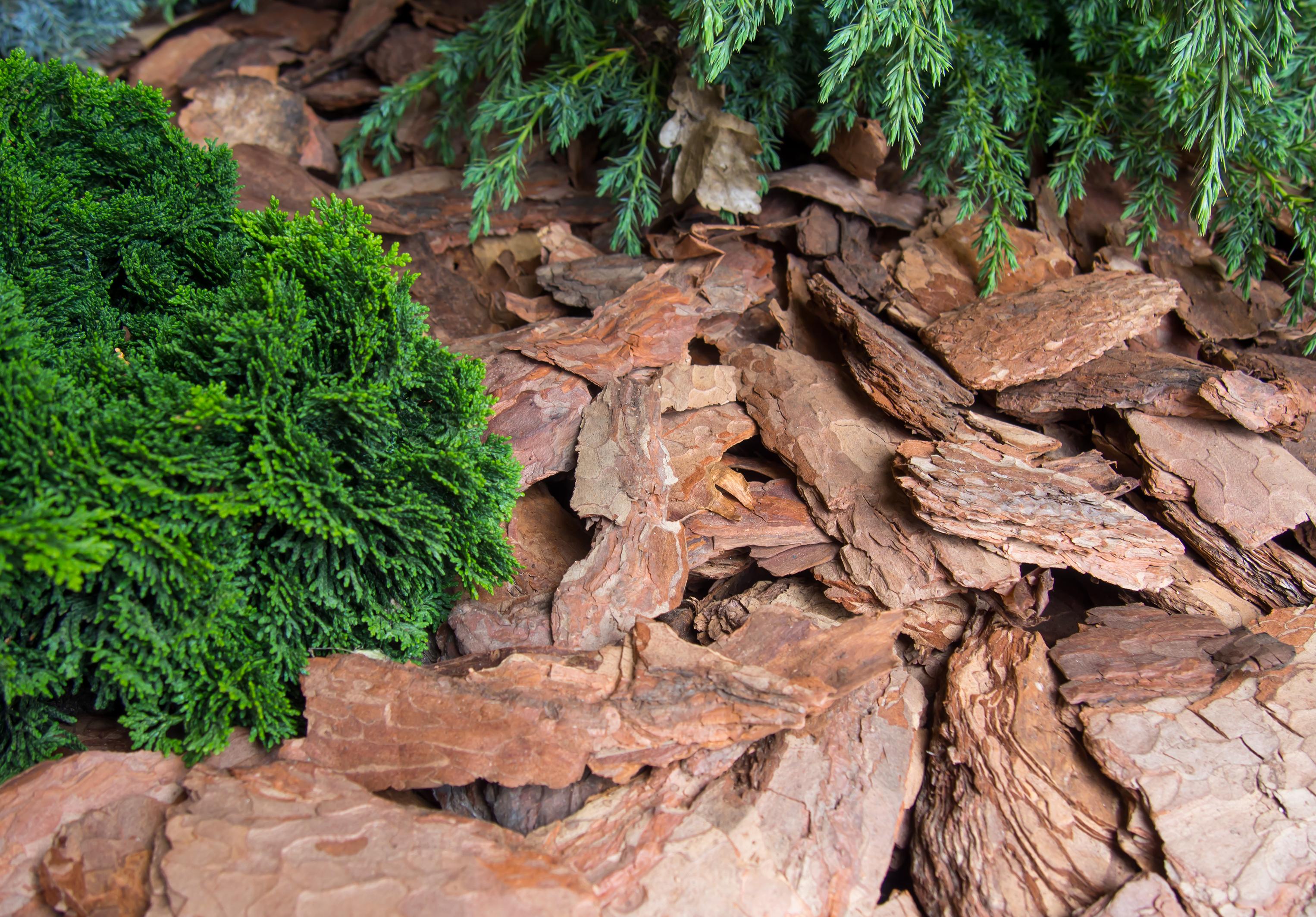 Organic landscaping