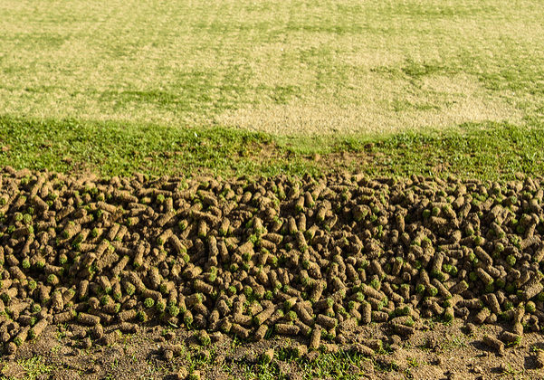 A pile of cores from the aeration process on the side of a green
