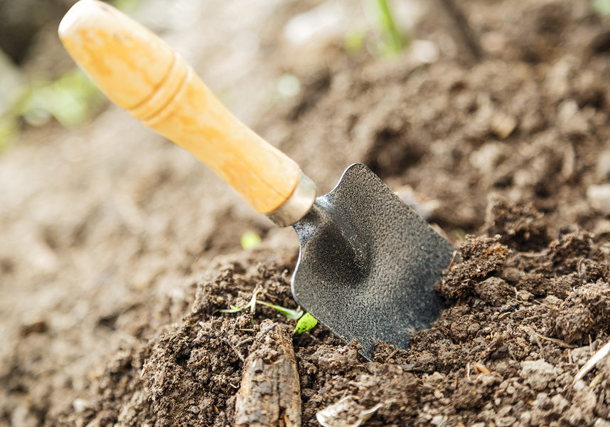 Soil with small shovel in summer day